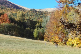 Randonnée a travers la féerie des couleurs d'automne