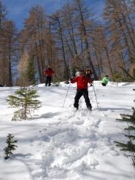 Rando raquettes dans les Hautes-Alpes